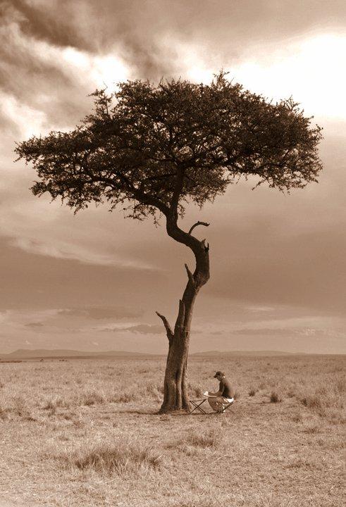 mara tree alexander